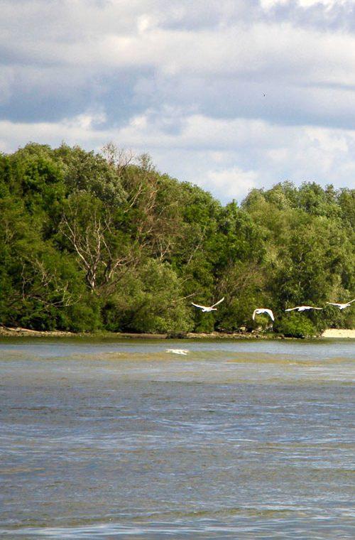 permis-bateau-normandie-loisirs